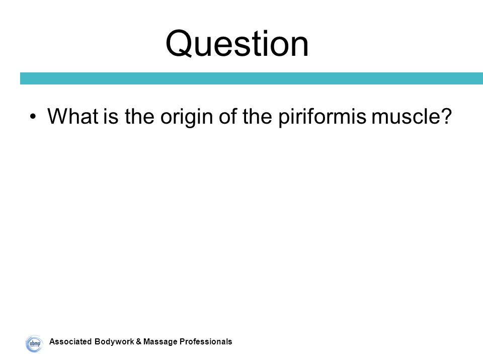 Associated Bodywork & Massage Professionals Question What is the origin of the piriformis muscle