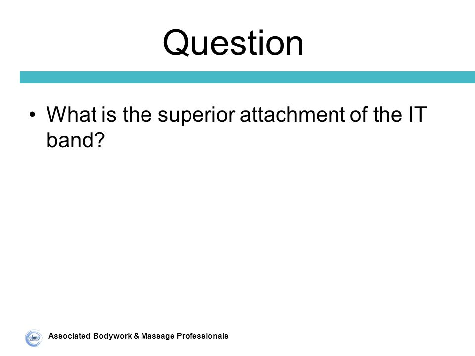 Associated Bodywork & Massage Professionals Question What is the superior attachment of the IT band