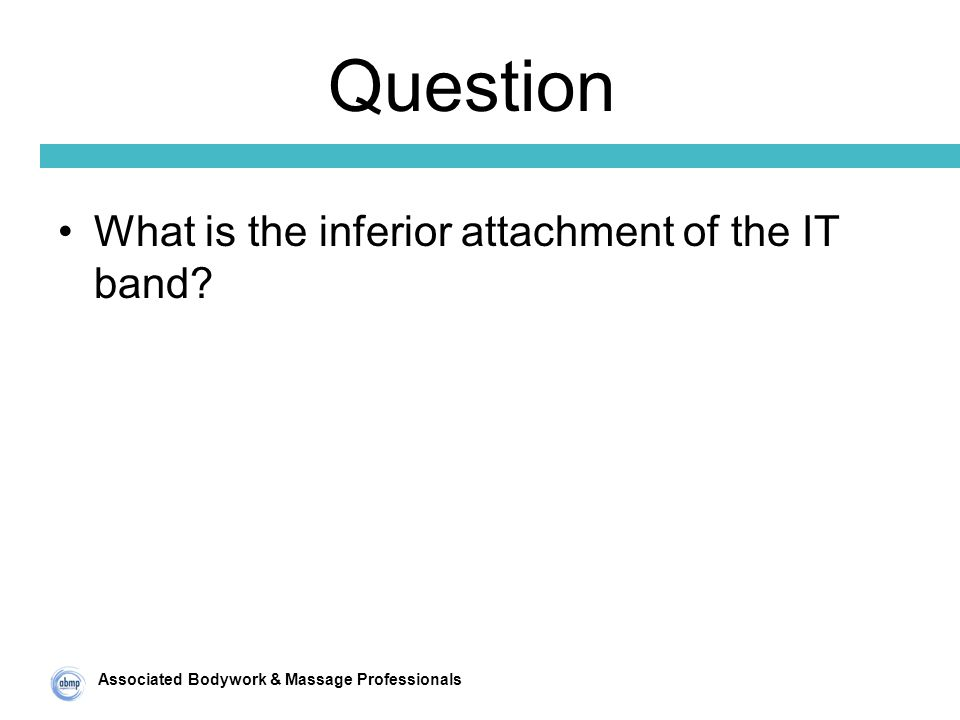 Associated Bodywork & Massage Professionals Question What is the inferior attachment of the IT band