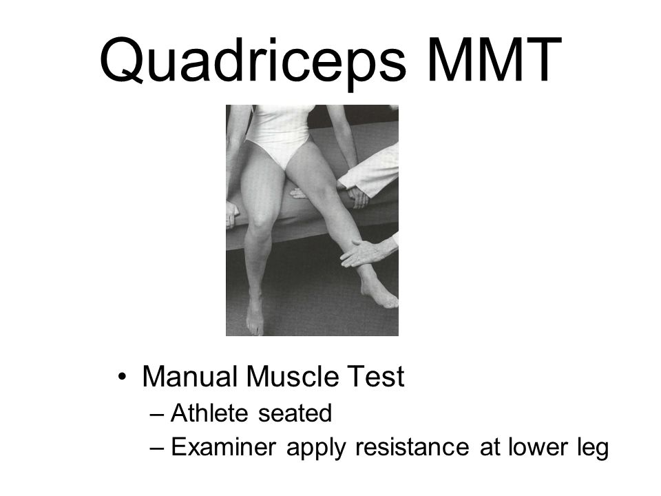 The Thigh And Hip Muscles Anatomy Injuries And Assessment Sports