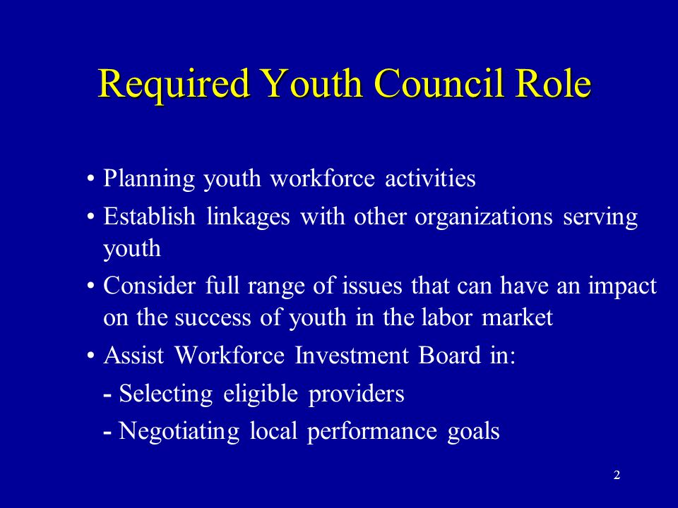 2 Required Youth Council Role Required Youth Council Role Planning youth workforce activities Establish linkages with other organizations serving youth Consider full range of issues that can have an impact on the success of youth in the labor market Assist Workforce Investment Board in: - Selecting eligible providers - Negotiating local performance goals