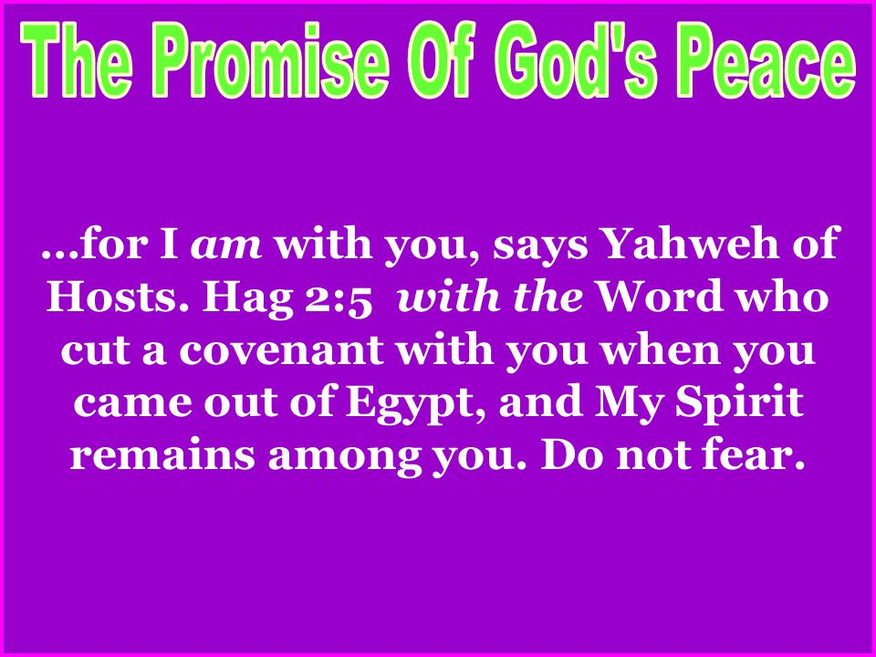 …for I am with you, says Yahweh of Hosts.