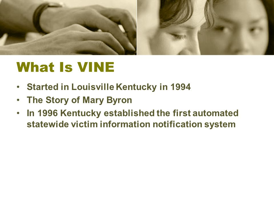 What Is VINE Started in Louisville Kentucky in 1994 The Story of Mary Byron In 1996 Kentucky established the first automated statewide victim information notification system