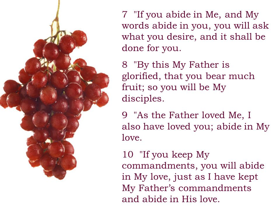 7 If you abide in Me, and My words abide in you, you will ask what you desire, and it shall be done for you.