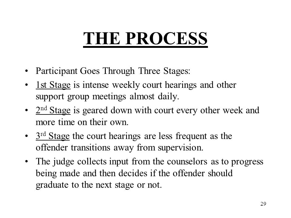 29 THE PROCESS Participant Goes Through Three Stages: 1st Stage is intense weekly court hearings and other support group meetings almost daily.