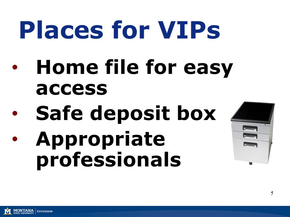 Places for VIPs Home file for easy access Safe deposit box Appropriate professionals 5