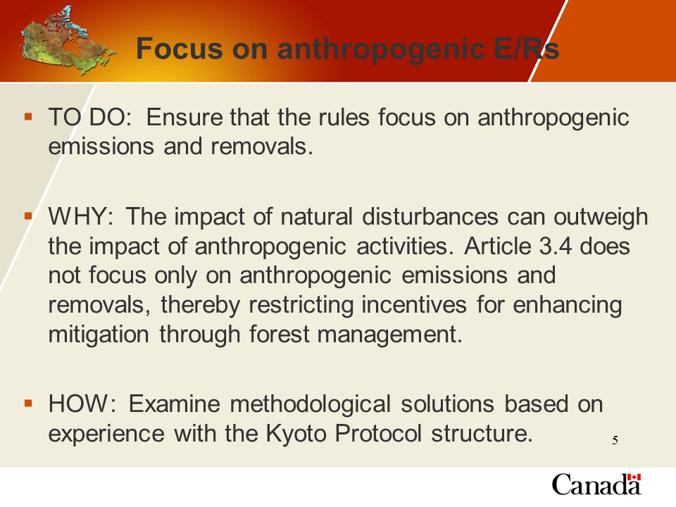 5 Focus on anthropogenic E/Rs  TO DO: Ensure that the rules focus on anthropogenic emissions and removals.
