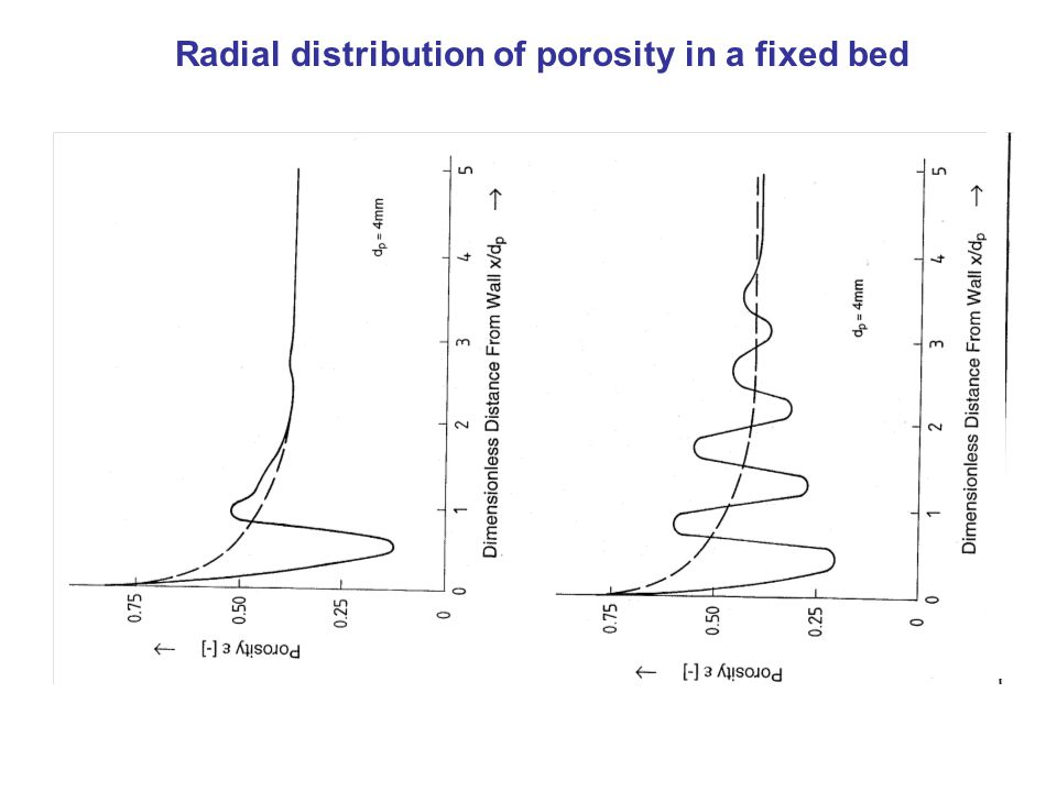 Radial distribution of porosity in a fixed bed