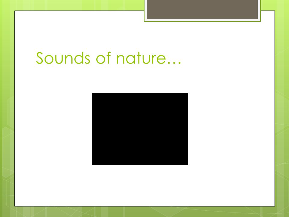 Sounds of nature…