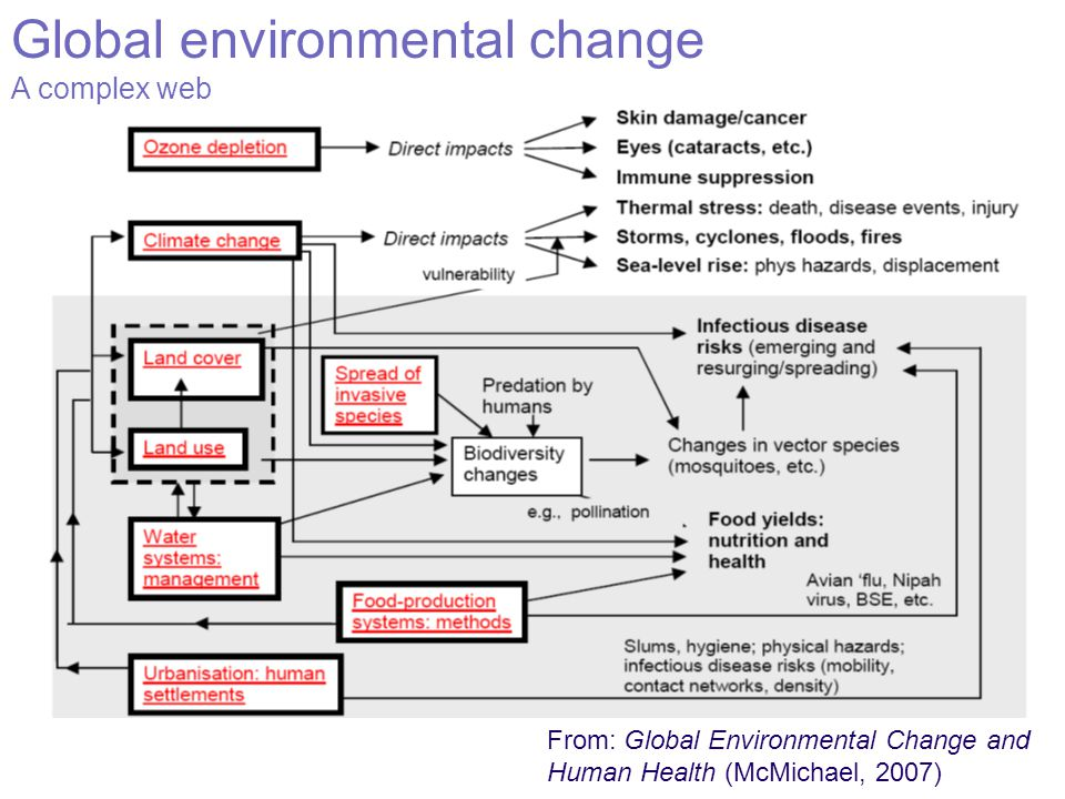 Global environmental change A complex web From: Global Environmental Change and Human Health (McMichael, 2007)