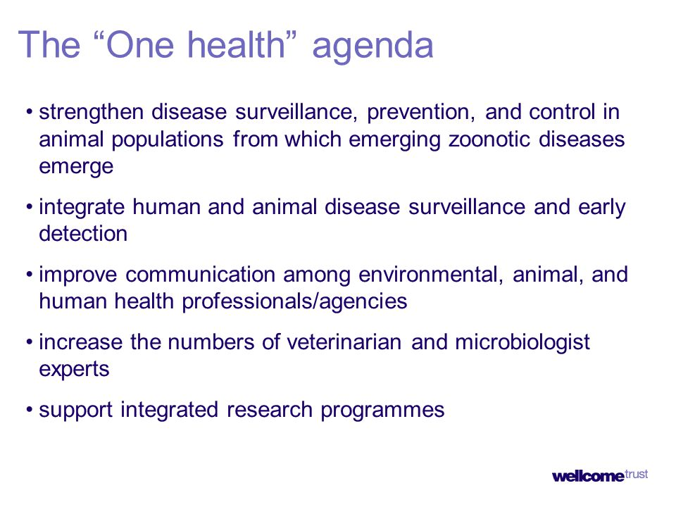 The One health agenda strengthen disease surveillance, prevention, and control in animal populations from which emerging zoonotic diseases emerge integrate human and animal disease surveillance and early detection improve communication among environmental, animal, and human health professionals/agencies increase the numbers of veterinarian and microbiologist experts support integrated research programmes