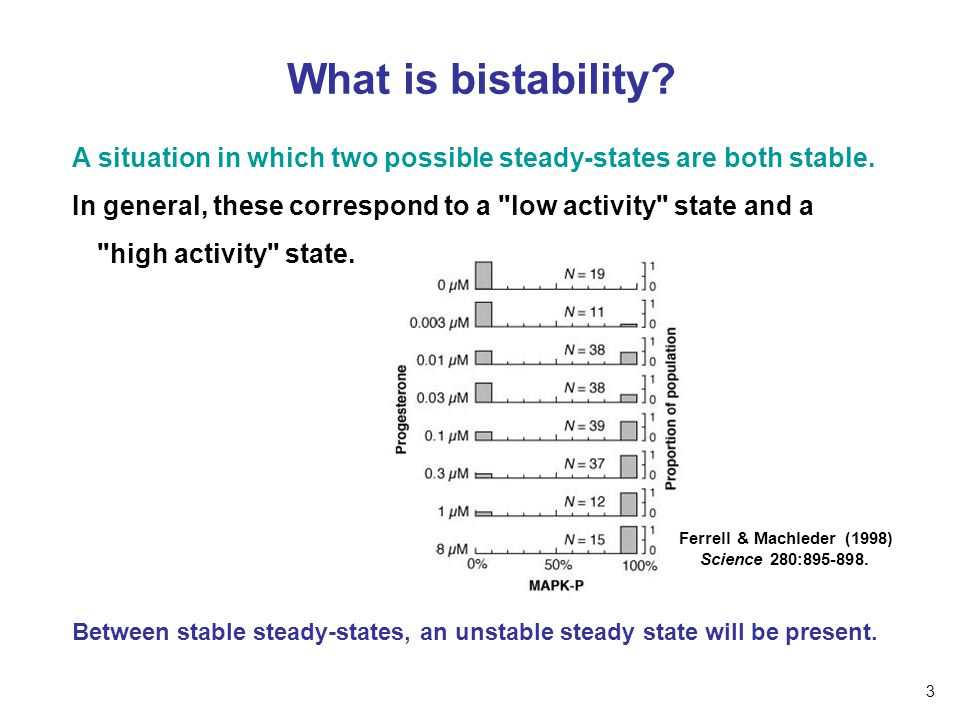 essay about happy memories incident