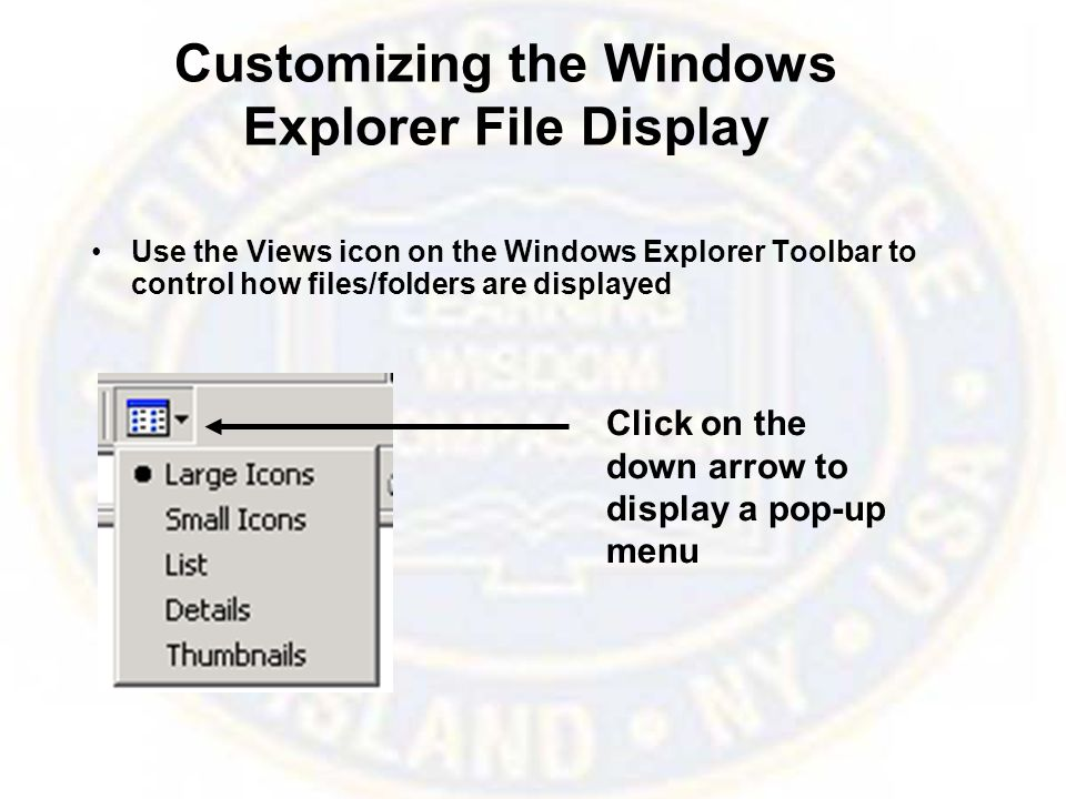 Customizing the Windows Explorer File Display Use the Views icon on the Windows Explorer Toolbar to control how files/folders are displayed Click on the down arrow to display a pop-up menu