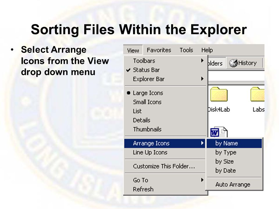 Sorting Files Within the Explorer Select Arrange Icons from the View drop down menu