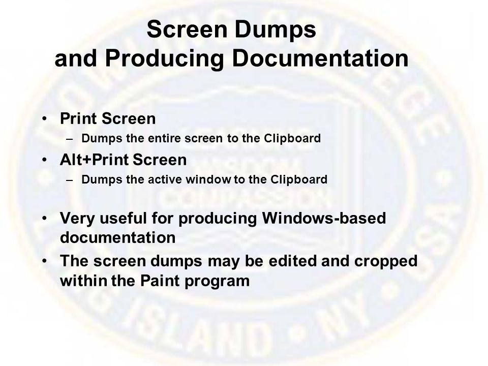 Screen Dumps and Producing Documentation Print Screen –Dumps the entire screen to the Clipboard Alt+Print Screen –Dumps the active window to the Clipboard Very useful for producing Windows-based documentation The screen dumps may be edited and cropped within the Paint program