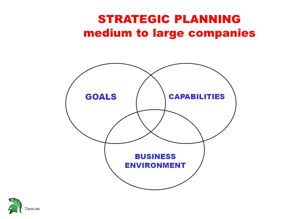 Narayan STRATEGIC PLANNING medium to large companies GOALS CAPABILITIES BUSINESS ENVIRONMENT