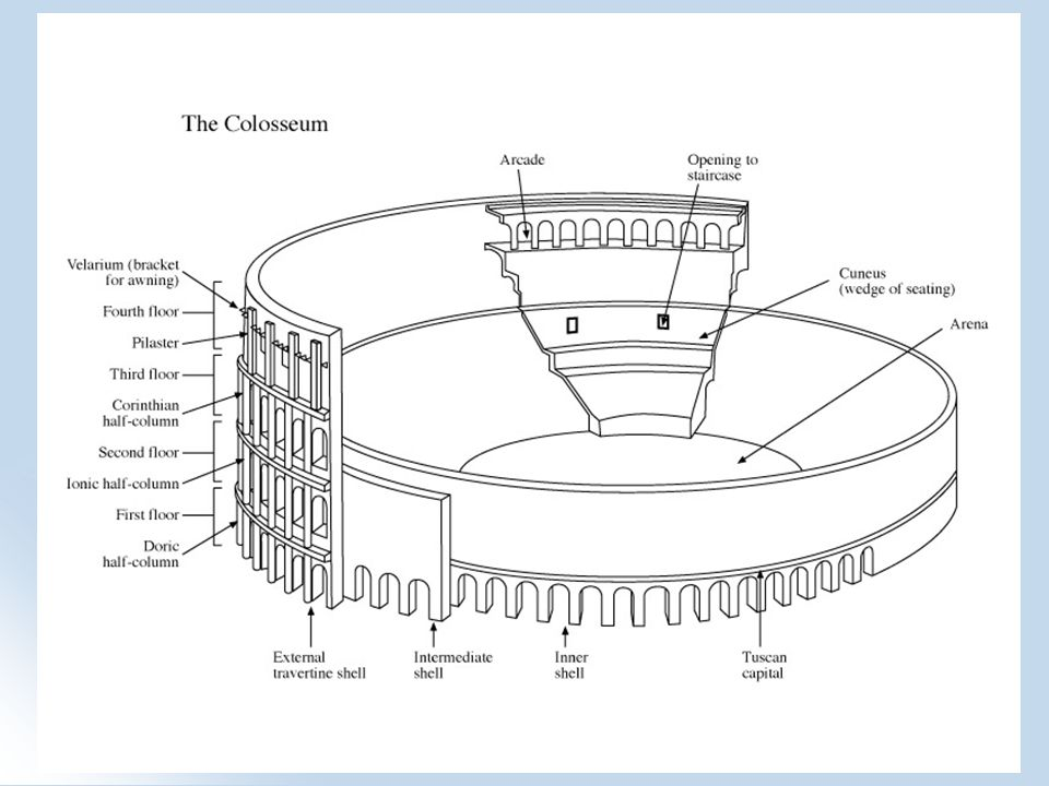 The Colosseum History Of The Colosseum It Was Originally Called The