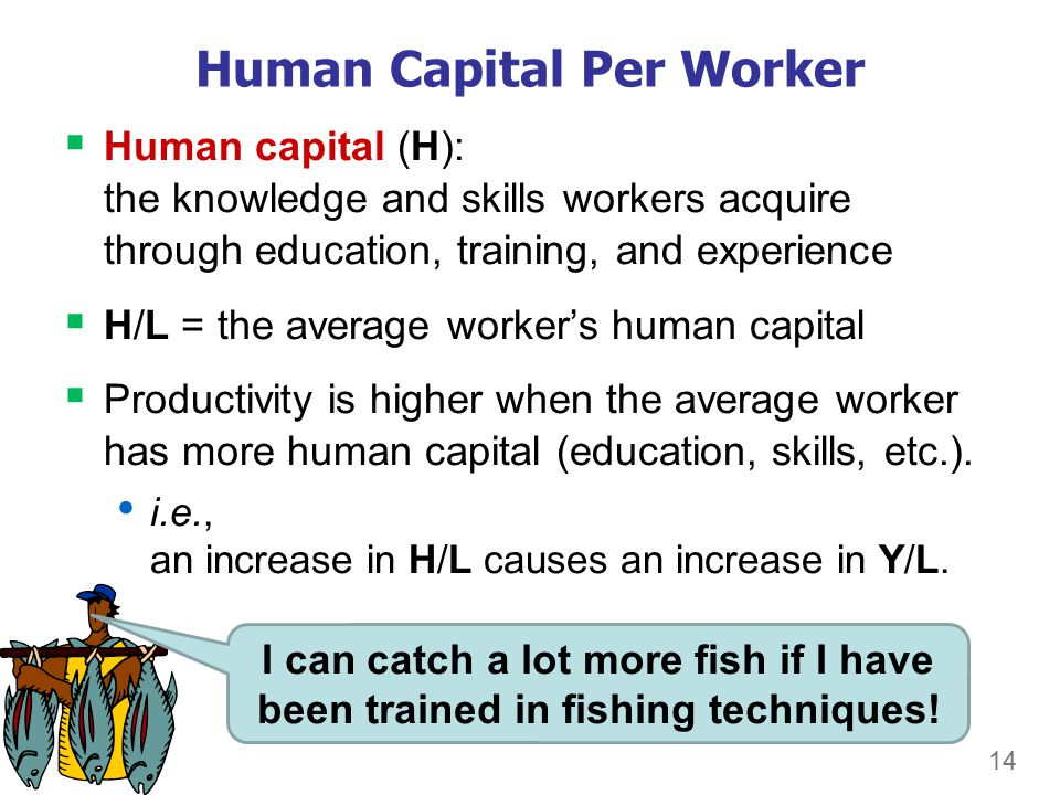 14 Human Capital Per Worker  Human capital (H): the knowledge and skills workers acquire through education, training, and experience  H/L = the average worker's human capital  Productivity is higher when the average worker has more human capital (education, skills, etc.).