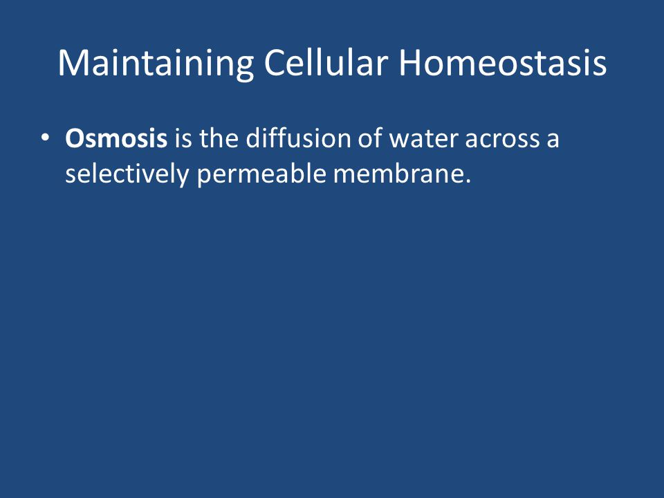 Maintaining Cellular Homeostasis Osmosis is the diffusion of water across a selectively permeable membrane.