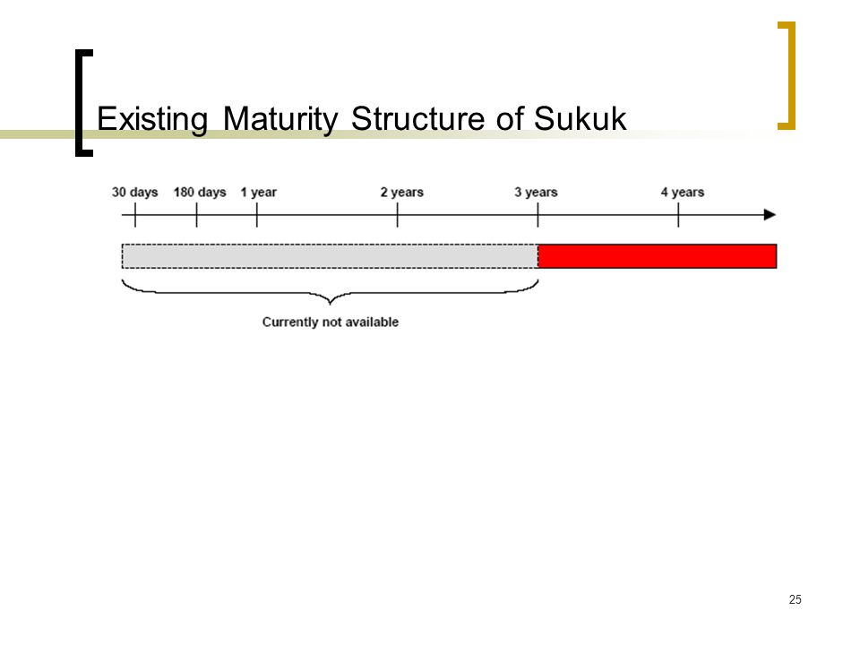 25 Existing Maturity Structure of Sukuk