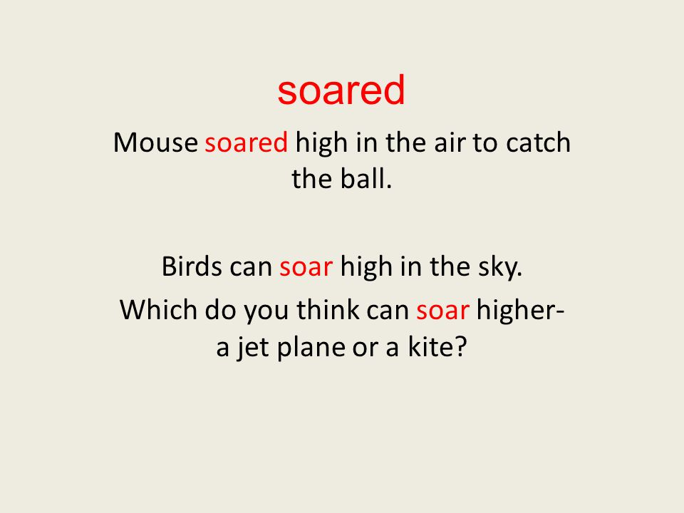 soared Mouse soared high in the air to catch the ball.