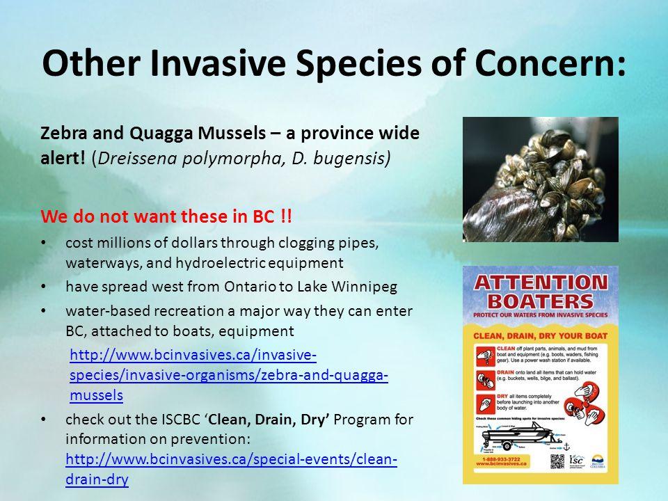 Invasive Species in British Columbia: Introduction An Online