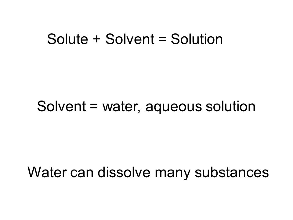 Solute + Solvent = Solution Solvent = water, aqueous solution Water can dissolve many substances
