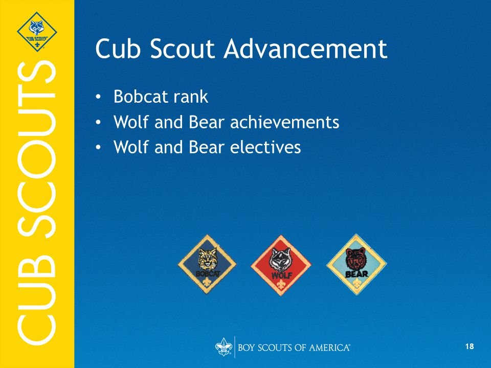 18 Cub Scout Advancement Bobcat rank Wolf and Bear achievements Wolf and Bear electives