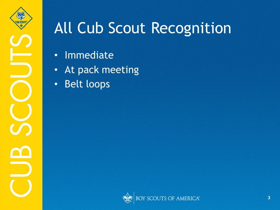 3 All Cub Scout Recognition Immediate At pack meeting Belt loops