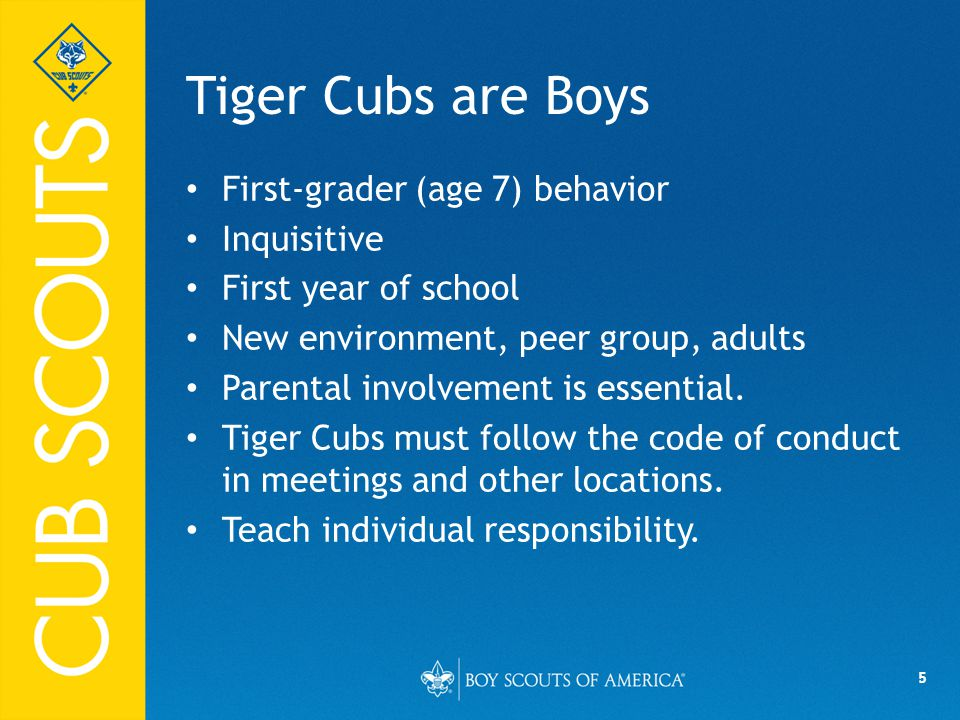5 Tiger Cubs are Boys First-grader (age 7) behavior Inquisitive First year of school New environment, peer group, adults Parental involvement is essential.