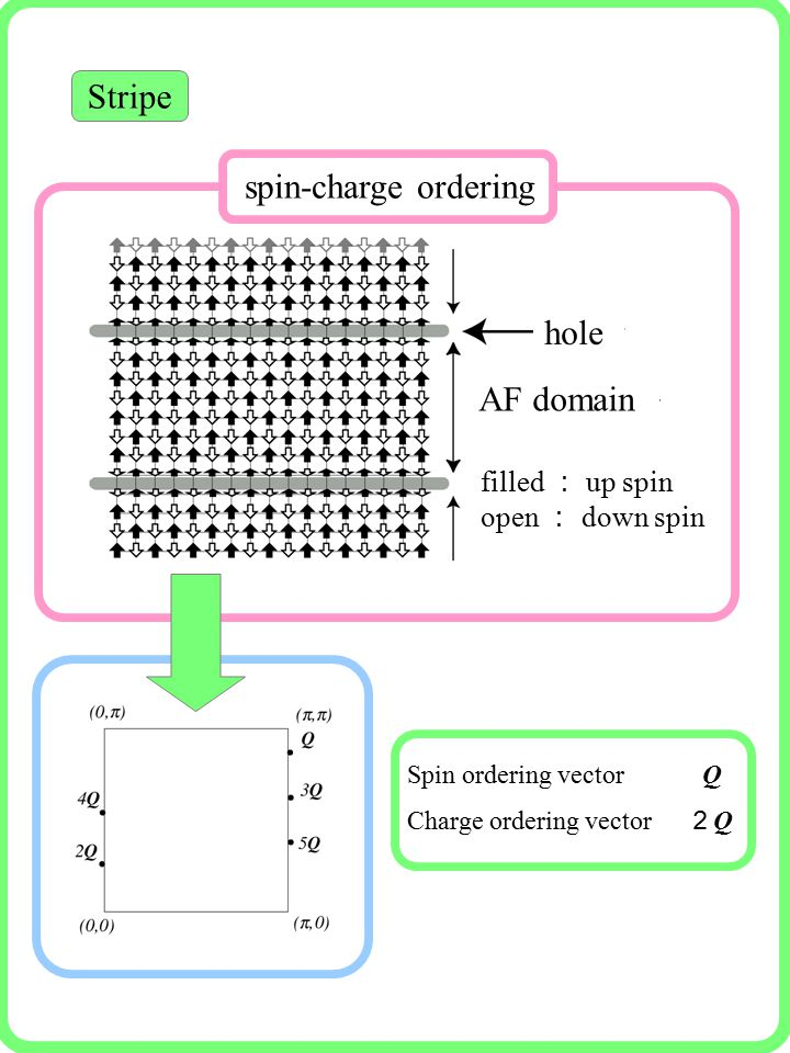 Stripe Spin ordering vector Q Charge ordering vector 2Q2Q filled : up spin open : down spin AF domain hole spin-charge ordering