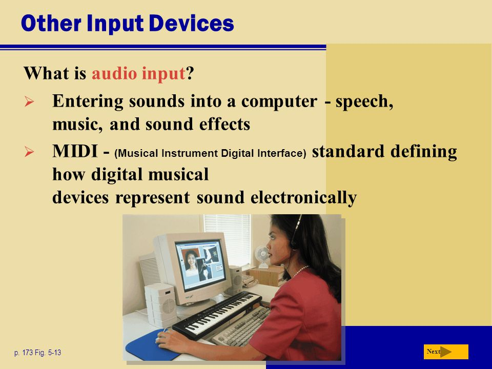 Other Input Devices p. 173 Fig Next What is audio input.