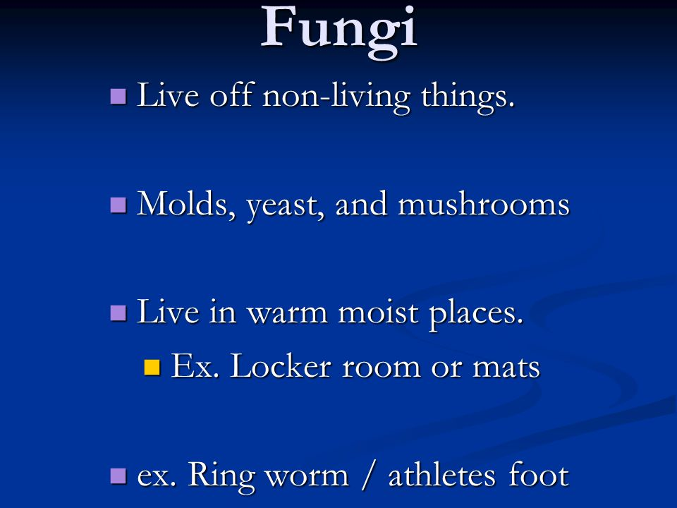 Fungi Live off non-living things. Live off non-living things.
