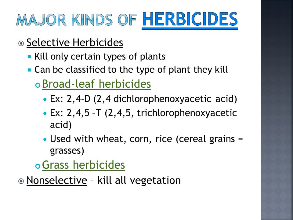  Selective Herbicides  Kill only certain types of plants  Can be classified to the type of plant they kill Broad-leaf herbicides Ex: 2,4-D (2,4 dichlorophenoxyacetic acid) Ex: 2,4,5 –T (2,4,5, trichlorophenoxyacetic acid) Used with wheat, corn, rice (cereal grains = grasses) Grass herbicides  Nonselective – kill all vegetation