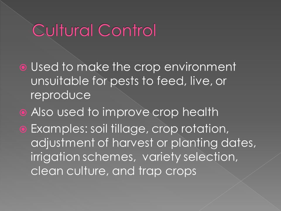  Used to make the crop environment unsuitable for pests to feed, live, or reproduce  Also used to improve crop health  Examples: soil tillage, crop rotation, adjustment of harvest or planting dates, irrigation schemes, variety selection, clean culture, and trap crops