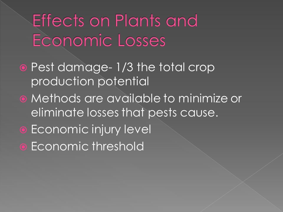  Pest damage- 1/3 the total crop production potential  Methods are available to minimize or eliminate losses that pests cause.