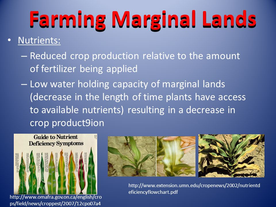 Farming Marginal Lands Nutrients: – Reduced crop production relative to the amount of fertilizer being applied – Low water holding capacity of marginal lands (decrease in the length of time plants have access to available nutrients) resulting in a decrease in crop product9ion   ps/field/news/croppest/2007/12cpo07a4   eficiencyflowchart.pdf