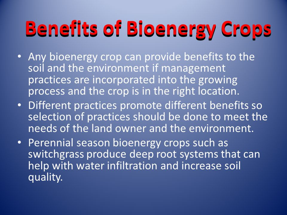 Benefits of Bioenergy Crops Any bioenergy crop can provide benefits to the soil and the environment if management practices are incorporated into the growing process and the crop is in the right location.