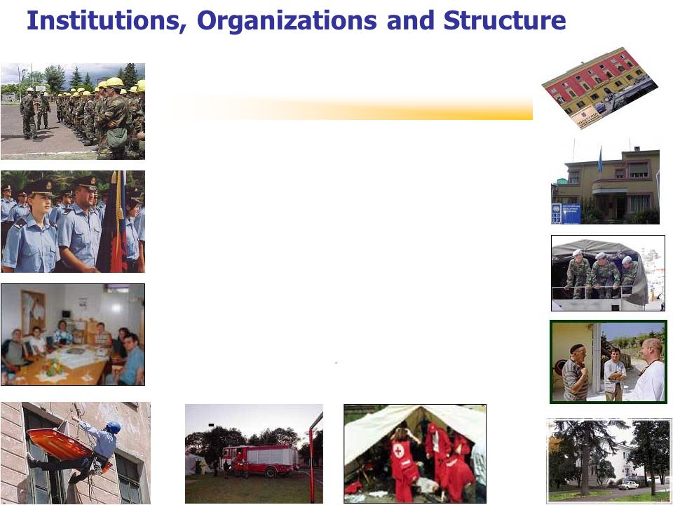 Institutions, Organizations and Structure