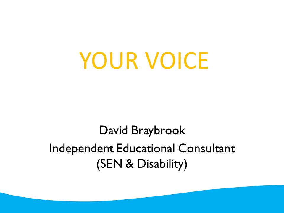 YOUR VOICE David Braybrook Independent Educational Consultant (SEN & Disability)