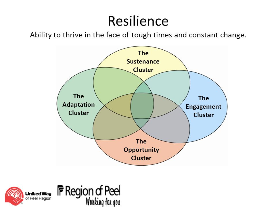Resilience Ability to thrive in the face of tough times and constant change.