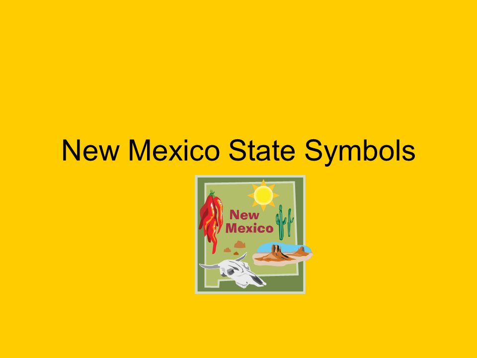 New Mexico State Symbols What Is Our State Air Craft Ppt Download