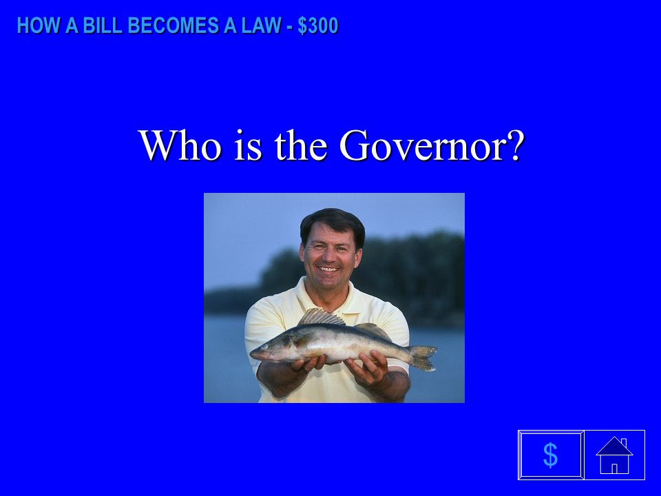 HOW A BILL BECOMES A LAW - $200 What is 1001 $