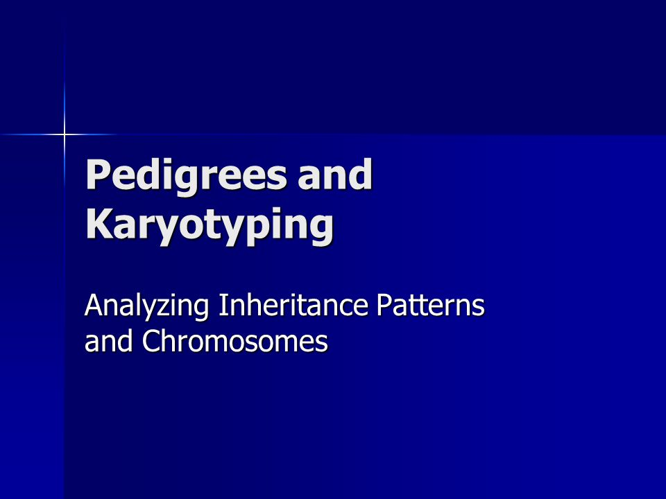 Pedigrees and Karyotyping Analyzing Inheritance Patterns and Chromosomes