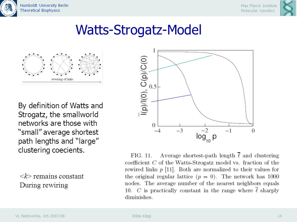 VL Netzwerke, WS 2007/08 Edda Klipp 16 Max Planck Institute Molecular Genetics Humboldt University Berlin Theoretical Biophysics Watts-Strogatz-Model By definition of Watts and Strogatz, the smallworld networks are those with small average shortest path lengths and large clustering coecients.