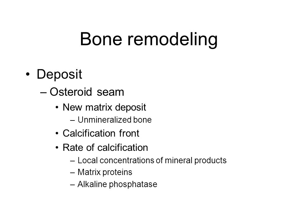 Bone remodeling Deposit –Osteroid seam New matrix deposit –Unmineralized bone Calcification front Rate of calcification –Local concentrations of mineral products –Matrix proteins –Alkaline phosphatase