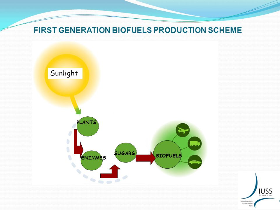 FIRST GENERATION BIOFUELS PRODUCTION SCHEME PLANTS ENZYMES SUGARS BiofuelsBIOFUELS Sunlight