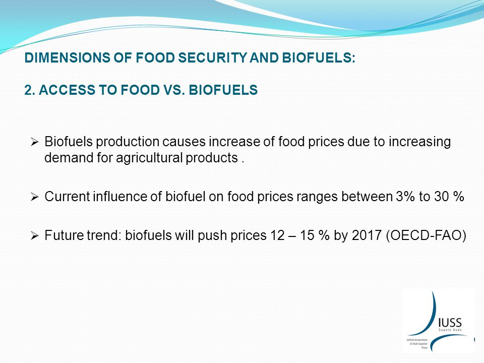 DIMENSIONS OF FOOD SECURITY AND BIOFUELS: 2. ACCESS TO FOOD VS.