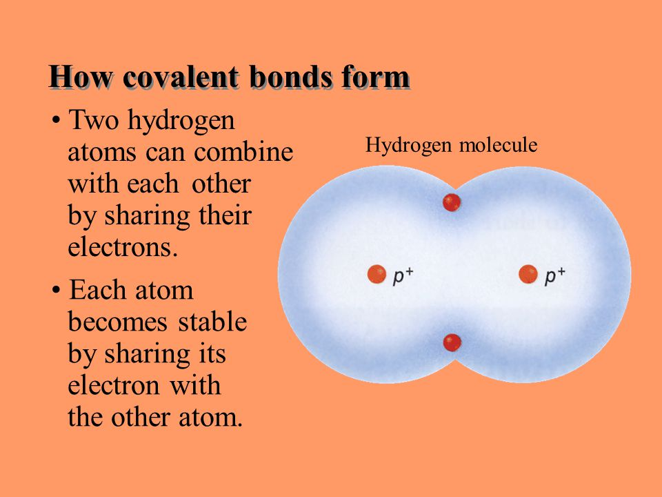 Section 6.1 Summary – pages Two hydrogen atoms can combine with each other by sharing their electrons.