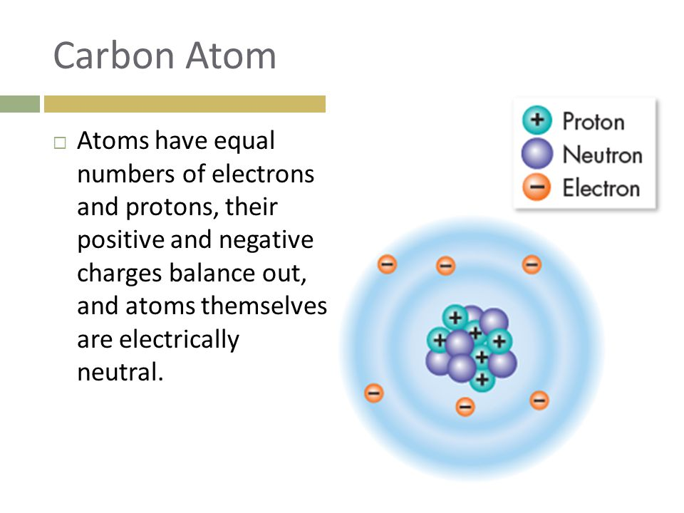 Carbon Atom  Atoms have equal numbers of electrons and protons, their positive and negative charges balance out, and atoms themselves are electrically neutral.
